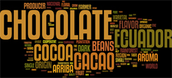 wordcloud-choc3